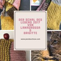 Schal für's Leben 2017