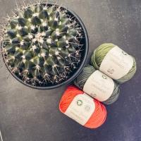 Kaktussi von Tanja Steinbach